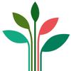 Meli Green Seed