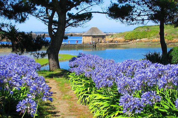 Bréhat, paradis breton sans voiture