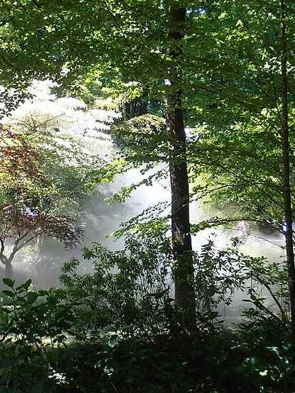 Jardin du Puy du Fou