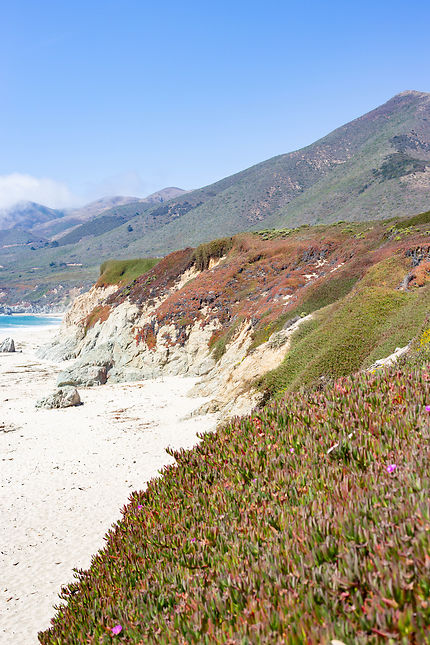 On the road - highway 1, California