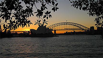 Opéra de Sydney sous le coucher de soleil