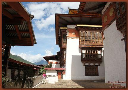Dzong de Punaka