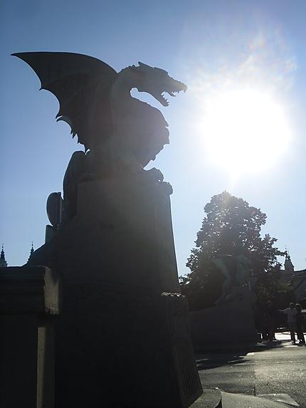 Un éblouissant dragon!