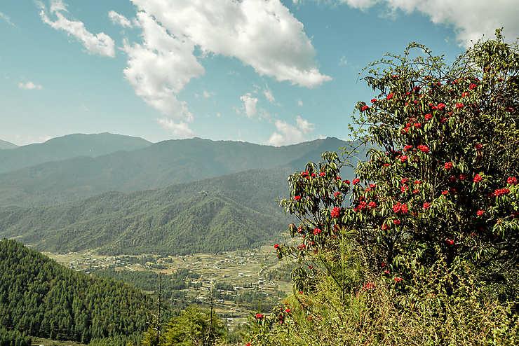 Vallée de Haa