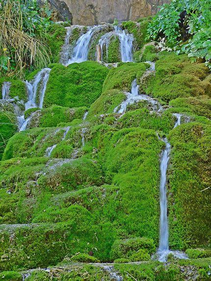 En aval de la cascade Pisoaia