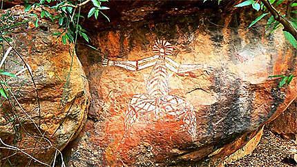 Kakadu - Peintures aborigènes