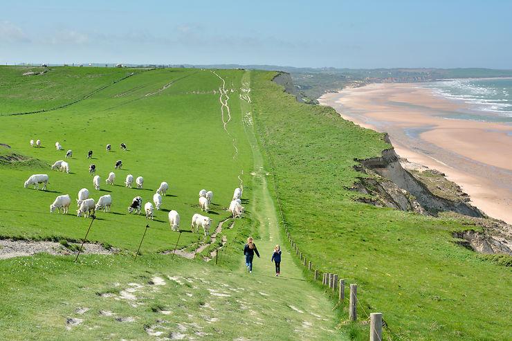 Cap Blanc-Nez dans le Pas-de-Calais... on dirait l'Irlande !