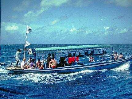 Bus de la mer
