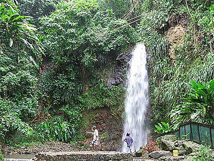 Cascade au Jardin botanique