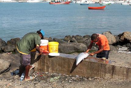 Retour des pêcheurs, nettoyage des poissons