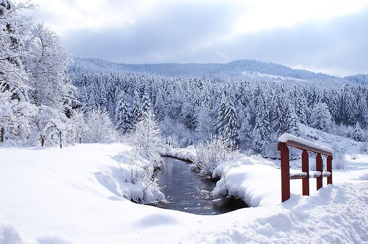 Gérardmer et les Vosges... on dirait la Suède !