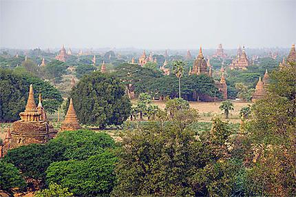 La plaine de Bagan