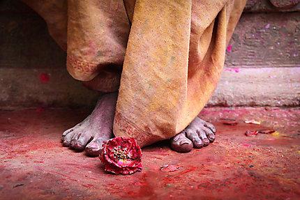 Jour de Holi dans les rues de Vrindavan
