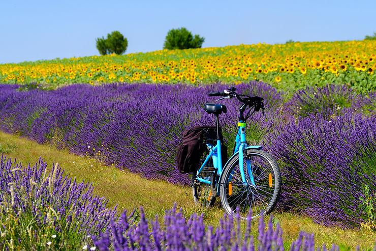 Promenades en Provence et Côte d'Azur