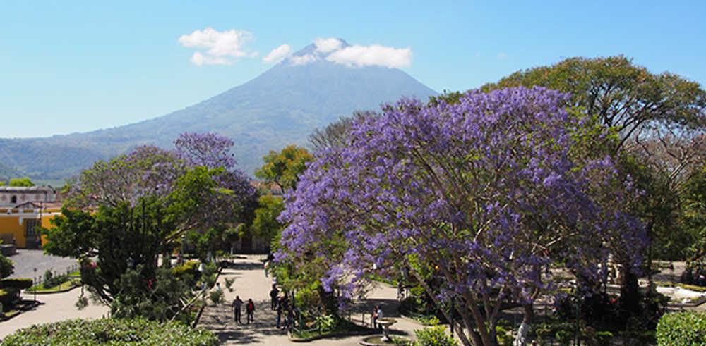 Récit de voyage au Guatemala - Honduras