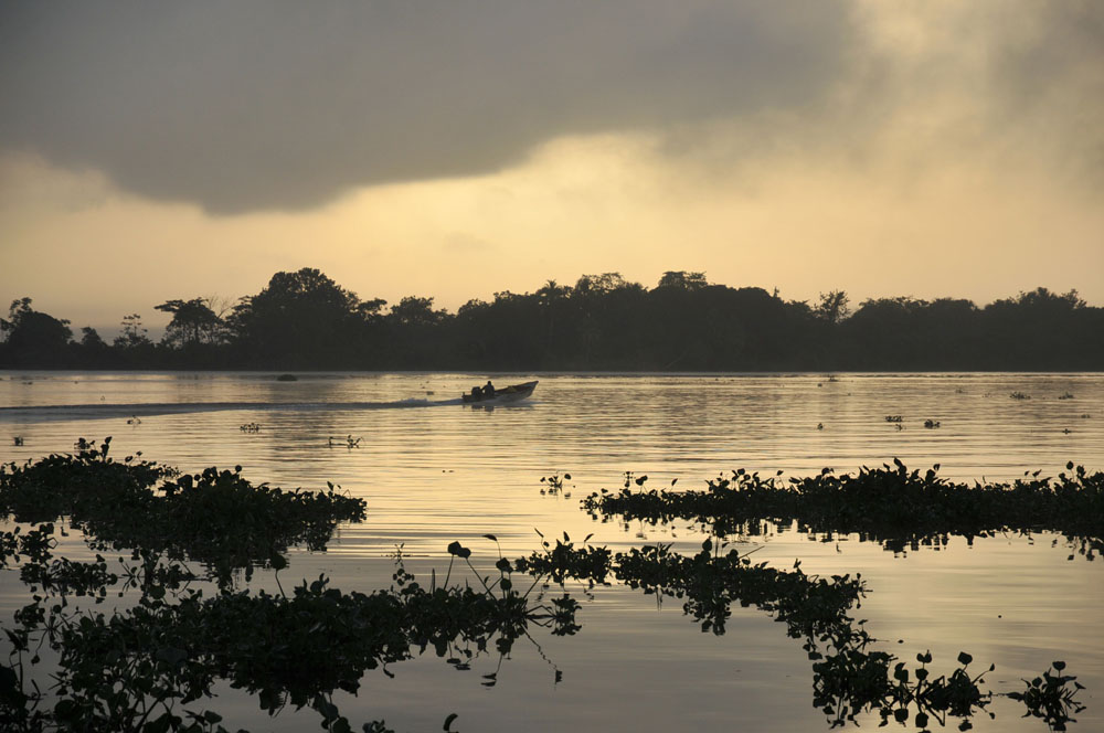 Orenoque et delta de l'Orenoque - Venezuela