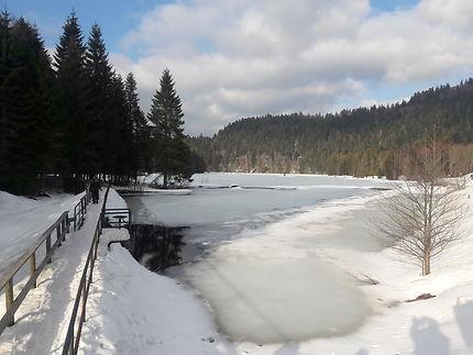 Lac de Lispach gelé