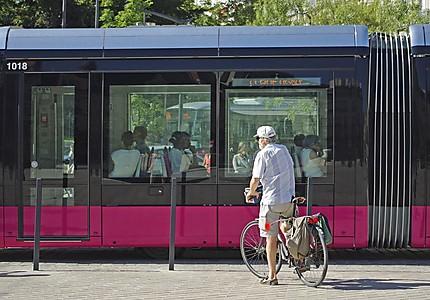Le tramway et un cycliste