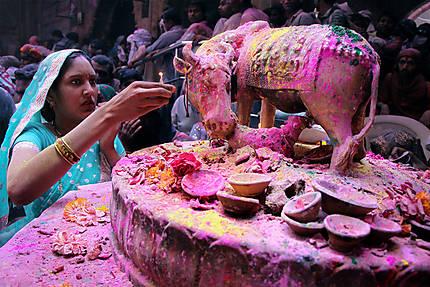 Rituel de puja, temple de Banke Bihari, Vrindavan