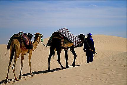 Mohamed avec Kiki et Caramel