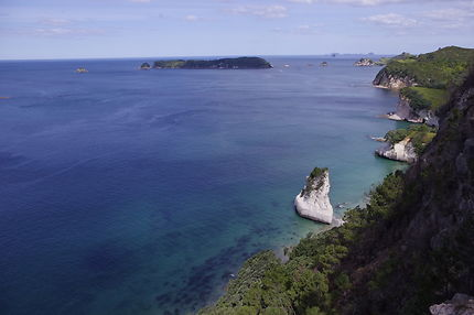 Walk in Coromandel, Hahei and Cathedral Cove