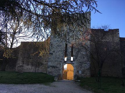 Le château des Adhémar