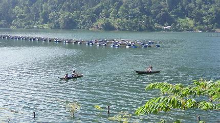 Pêcheurs d'écrevisses au lac Maninjau, Indonésie