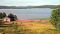 Finlande : en Laponie, au pays des Samis