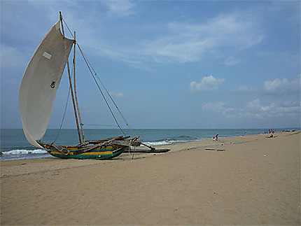 Plage de Négombo