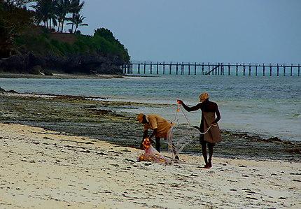 pêcheurs d'algues sur la plage