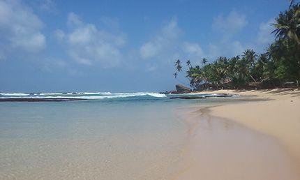 Sri Lanka Dalawella