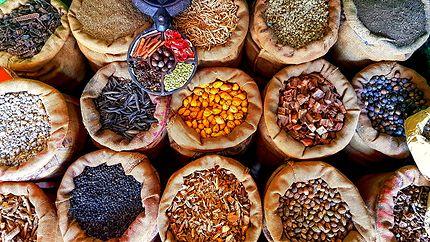 Spicy à Kochi, Inde