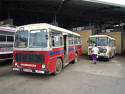 Bus pour Sigiriya