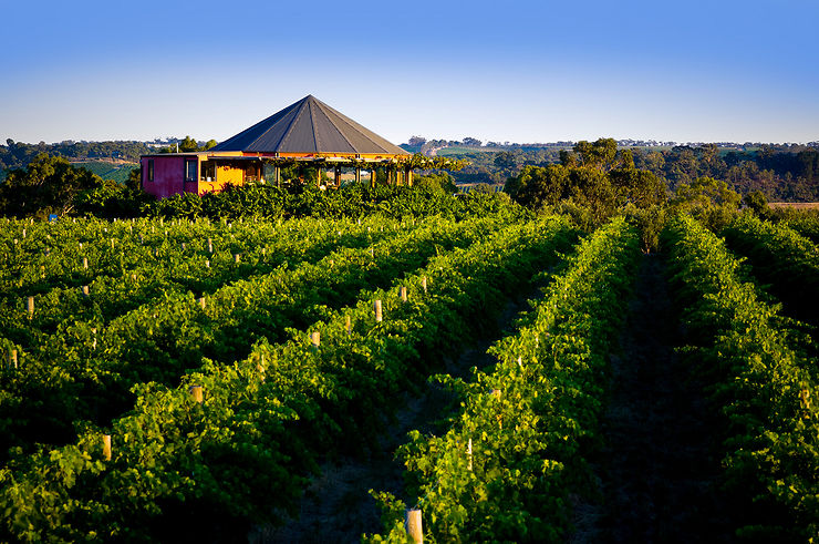 L'Epicurean Way, route des vins autour d'Adélaïde