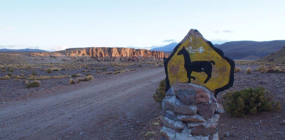 Expédition: Salar d'Uyuni et sa réserve naturelle Eduardo Avaroa