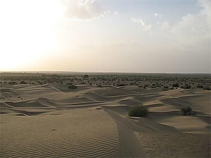 Dune au coucher du soleil