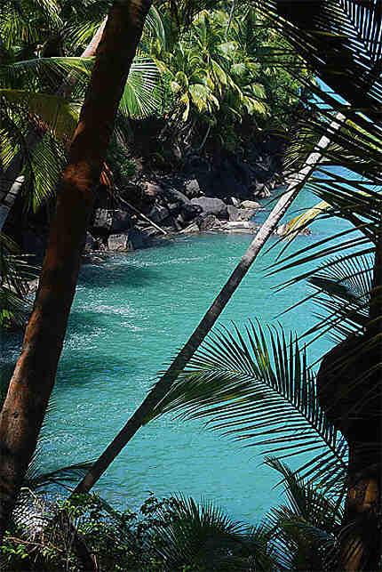 Rares eaux bleues en Guyane