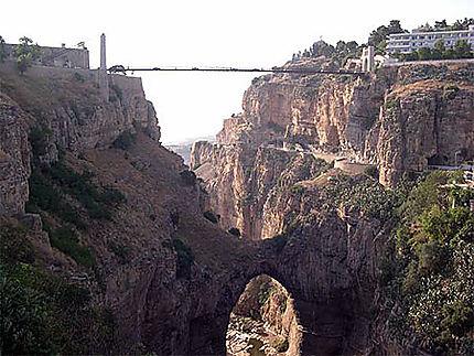 Pont de l'homme et pont de la nature