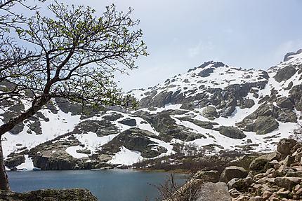 Le printemps arrive au lac Melo