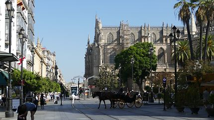 LaCathédrale de Santa Maria du Siège de Séville
