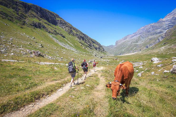 La Tarentaise Vanoise : la Savoie au sommet !