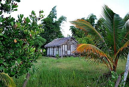 Habitat traditionnel brousse de Mahambo
