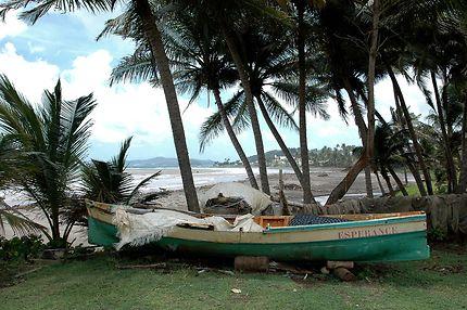 L'espérance après une petite tempête tropicale