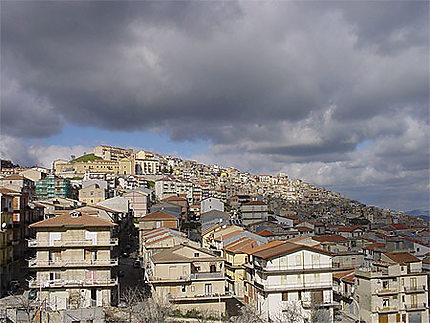 Cammarata