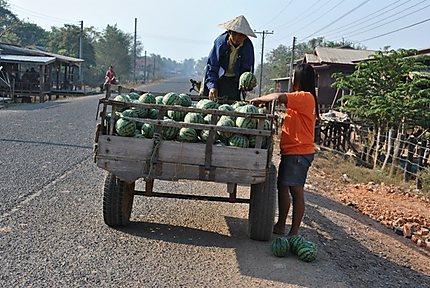Livraison de pastèques à domicile
