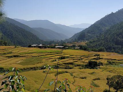 Paysage au Bhoutan