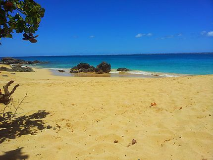 Une plage sur l'île de Saint-Martin