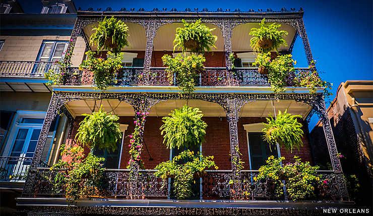 Nature au balcon