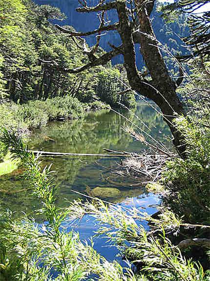 Un des lacs du PN de Huerquehue