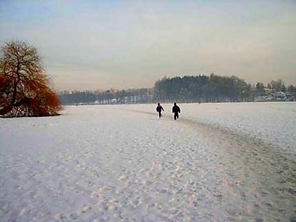 Lac gelé de Jindrichuv Hradec